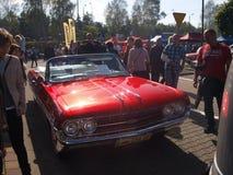 Verzameling van oude auto's Stock Foto's