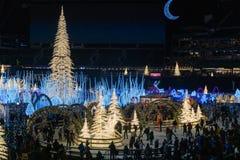 Verzaubern Sie Weihnachtseislauf lizenzfreies stockfoto