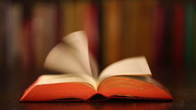 Verzaubertes magisches Buch stock video footage
