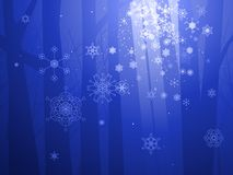 Verzaubertes Winterholz Stockfoto