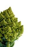 Verzieren Sie broccoflower - das brocolli, das auf weißem Hintergrund lokalisiert wird Lizenzfreies Stockfoto