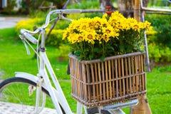 Verzierte gelbe Blumen in einem Korb Stockfoto