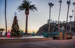Verzierter Baum auf Catalina-Promenade Lizenzfreies Stockbild