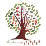Verzierter Baum mit Obst und Gemüse Lizenzfreies Stockbild