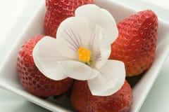 Verzierter Erdbeerenachtisch Stockbilder