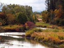 Verzierter Fluss mit Farbe Stockbild