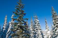 Verzierter Saisonbaum in einem Winterwald stockfoto