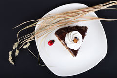 Verzierter Schokoladenkuchen Lizenzfreies Stockfoto