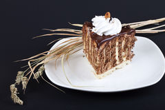 Verzierter Schokoladenkuchen Lizenzfreies Stockbild