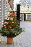 Verzierter Weihnachtsbaum im Topf auf der Straße an der Festival ` Reise nach Weihnachten-` stockfotos