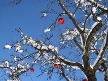 Verzierter Weihnachtsbaum mit mit rotem Weihnachtsflitter Stockbilder