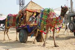 Verziertes Kamel, das an pushkar Kamel mela Jahresurlaub teilnimmt Lizenzfreie Stockfotografie