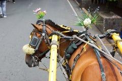 Verziertes Pferd Stockbild