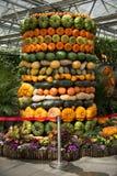 Verzierung synthetisierte Melonengruppe stockbilder