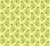 Verzierunggrün Stockfotos