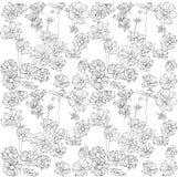 Verzierungsmusterleichte Schwarzweiss-Blumen Lizenzfreie Stockfotos