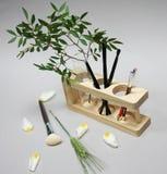 Verzweigen Sie sich in eine Flasche Bürsten und Blumenblätter auf einer Tabelle in einem Stand Lizenzfreies Stockfoto