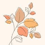 Verzweigen Sie sich mit Blättern Stockfotos