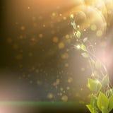 Verzweigen Sie sich mit Blättern auf einem abstrakten Hintergrund mit Strahlen und Stellen Lizenzfreies Stockfoto
