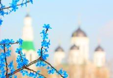 Verzweigen Sie sich mit blauen Blumen auf einem Hintergrund des Tempels Stockfotografie