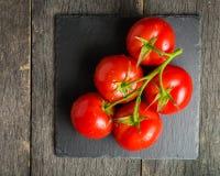 Verzweigen Sie sich mit fünf reifen roten Tomaten Wassertropfen auf reifen Früchten Grünblätter und -stamm Stockfoto
