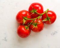 Verzweigen Sie sich mit fünf reifen roten Tomaten Wassertropfen auf reifen Früchten Grünblätter und -stamm Stockfotografie