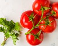 Verzweigen Sie sich mit fünf reifen roten Tomaten Wassertropfen auf reifen Früchten Grünblätter und -stamm Stockfotos