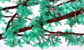 Verzweigen Sie sich mit grünen Blumen entziehen Sie Hintergrund Stockfotografie