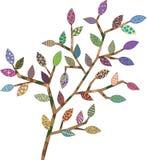 Verzweigen Sie sich mit ungewöhnlichen Blättern für Ihr Design Lizenzfreies Stockbild