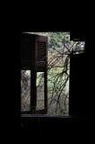 Verzweigt sich zerbrochene Fensterscheibe Lizenzfreie Stockfotografie