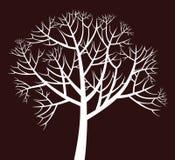 Verzweigter Baum vektor abbildung