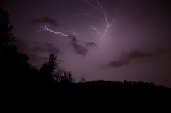 Verzweigter Blitz im Wald Stockfoto