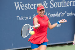 Vesnina 242 Photos stock