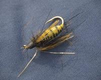 Vespa alta vicina dell'ape dell'esca della mosca di pesca di macro per la mosca-fishin di pesca con l'amo Immagine Stock