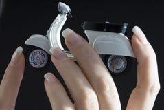 Vespa en los dedos Imagen de archivo libre de regalías