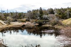 Vessels Brook ponds and the vire of the St Lawrence Seasway, Gros Morne National Park, Newfoundland, Canada stock images