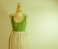 Vest and dress Royalty Free Stock Photos