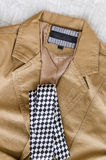 Veste de mode de Brown avec la cravate noire et blanche Photographie stock