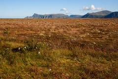 Vesteralen在挪威 免版税库存图片