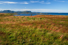 Vesteralen在挪威 免版税库存照片