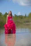 Vestido adolescente del baile de fin de curso del soporte Fotografía de archivo