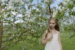 Vestido blanco que lleva de la muchacha rubia hermosa adolescente con los cuernos o de los ciervos Fotos de archivo