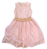 Vestido cor-de-rosa com rosas Imagens de Stock