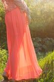 Vestido da dama de honra fotografia de stock royalty free