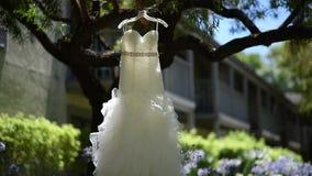 Vestido de casamento em uma árvore vídeos de arquivo