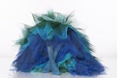 Vestido de noite do tule com pés da mulher Imagens de Stock
