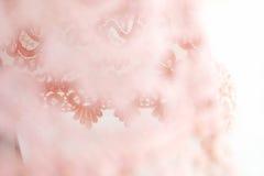 Vestido del cordón de la textura de la costura del primer Imagen de archivo