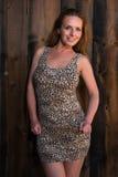 Vestido del estampado leopardo imagen de archivo