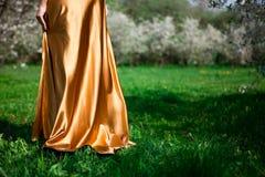 Vestido do ouro Fotografia de Stock