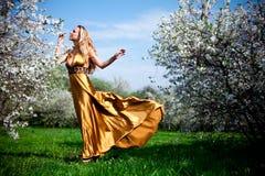 Vestido do ouro Imagens de Stock Royalty Free